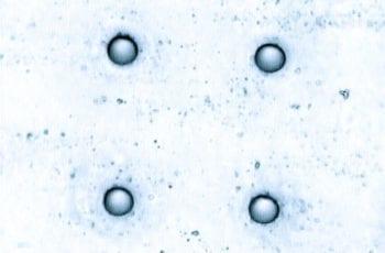 GlassHoles1